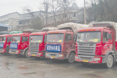 遵义销毁百吨假劣商品装了11辆大货车