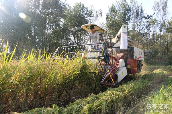 能上高速能下田收割机运输对车要求高