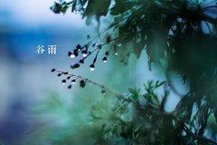 【福田瑞沃】节气说|谷雨时节 春远夏至