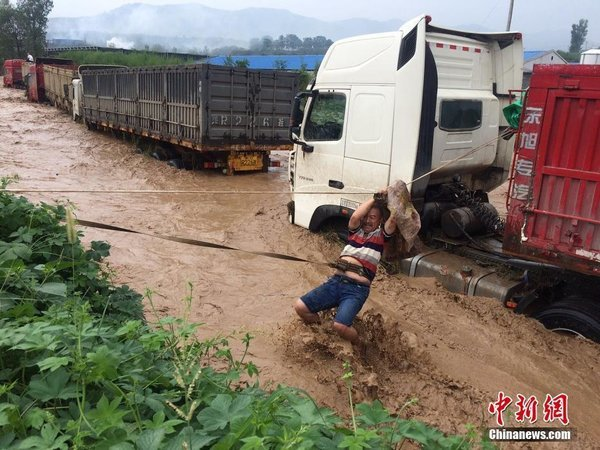 卡车周爆:还有4个月,天津港、唐山港、黄骅港等集港煤炭全部公转铁!