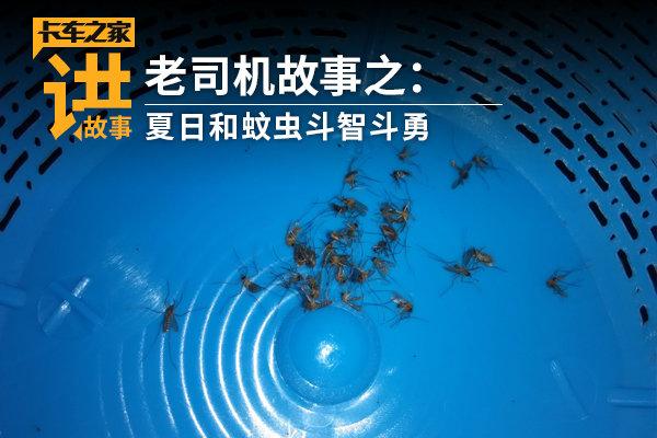 不用再点蚊香老司机研究的这几个办法一晚上都不会被蚊子咬!