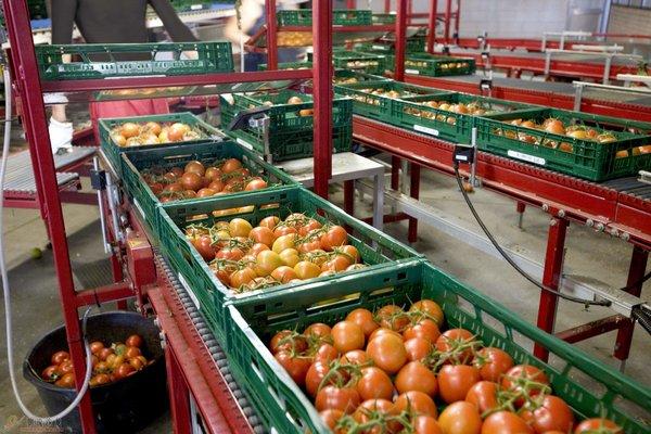 """生鲜食材消费升级中国冷链物流产业要""""热""""起来"""