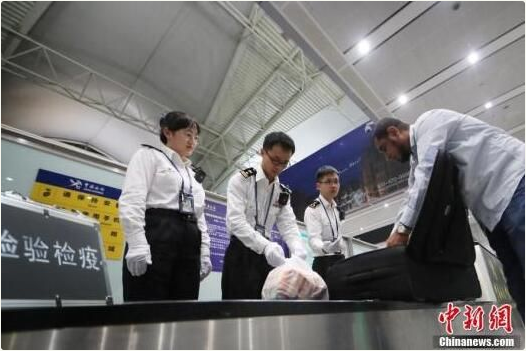 广州海关:发展多式联运推动粤港澳跨境物流通道