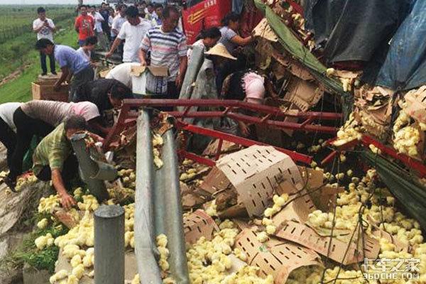 货车侧翻村民见死不救却哄抢货物,卡车司机该怎么办?