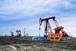 年终油价每升降0.3元,算算能省多少钱