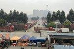 商用车市场探析 2019北京轻卡市场表现