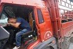 货车司机运输背后的辛酸 你们谁知道?