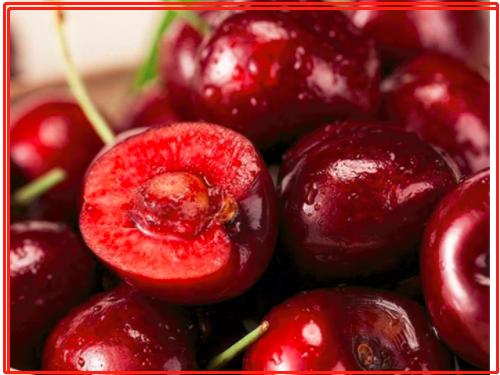 从樱桃角度看农产品冷链物流发展趋势