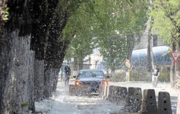 卡车司机开车难发动机散热全靠它!水箱该如何维护和保养?