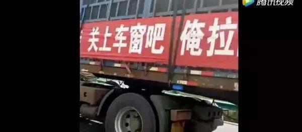 货车司机夏天最不愿意拉的5种货物绿通居然才排第5!