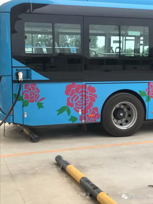 南阳探访:公交司机称使用氢燃料车不如电车划算