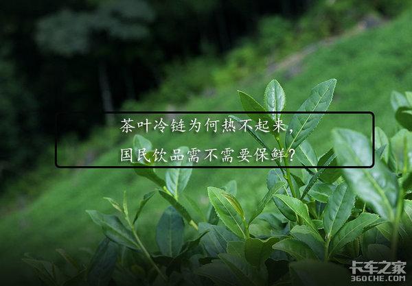 冷链物流大热,为何茶叶运输却是个冷门