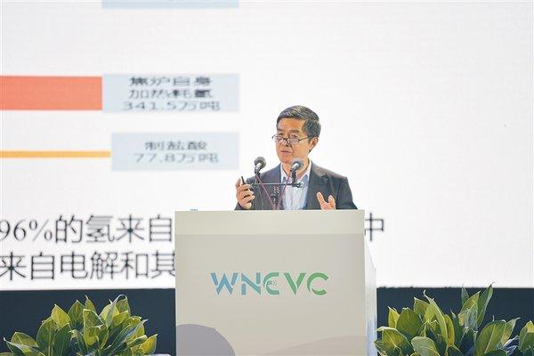 专家:海南发展新能源汽车条件得天独厚