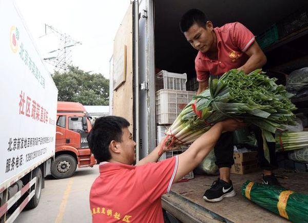 """民生聚焦:首批蔬菜直通车""""正规军""""上路"""