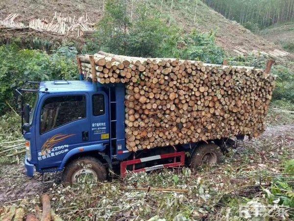农机淘汰后广西拉木车开始向轻卡转型