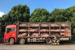 绿色通道再次开启,猪肉运输行业将有何变化?