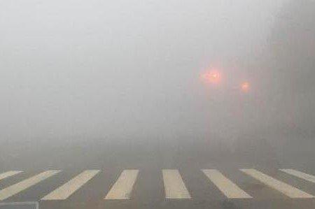 河南发布大雾黄色预警多个高速段管制
