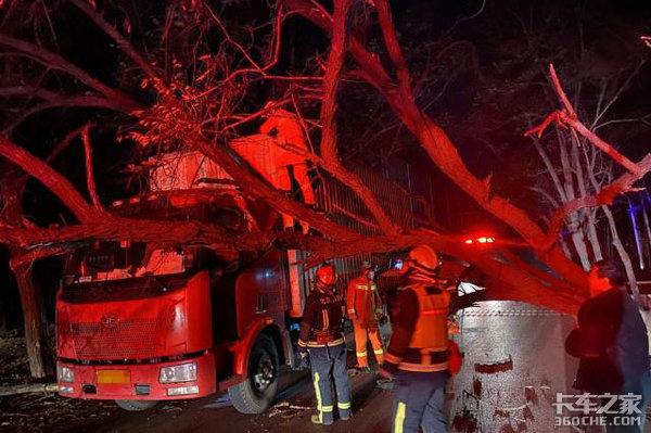 大风来袭:直径50cm的绿化树被刮倒,不偏不倚砸中货车