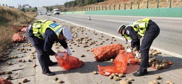 货车土豆撒满地交警救援免损真给力