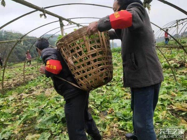 �o州合江兄弟�B三�_�支援武�h30��蔬菜
