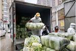 保障疫区!拼多多100吨蔬果直送武汉