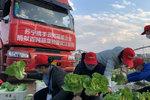 飞驰三千里支援武汉 货车司机的返程记