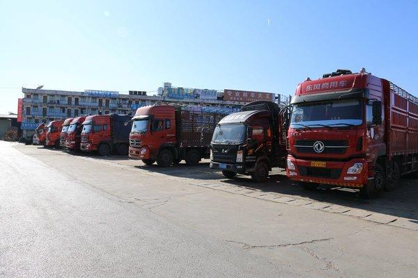 销量喜人!2019年中国货车出口量同比增长3.3%