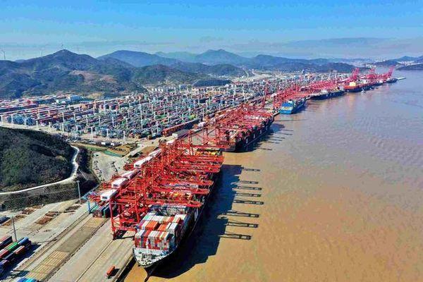 要上班的你开心吗?宁波舟山港1593家集卡企业复工复工率达96%