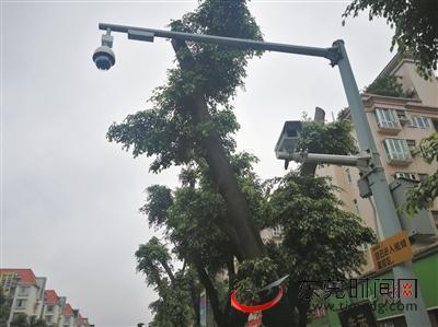 东莞增设一批电子警察主查货车闯禁区