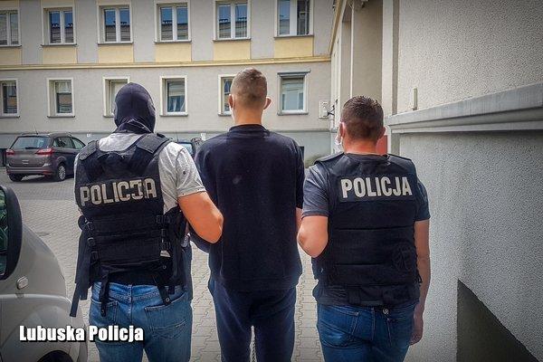 盗窃卡车后处理装置波兰一对夫妇将面临最高10年监禁