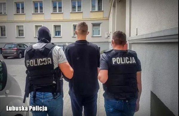 盗窃货车后处理装置波兰:偷的判10年国内还是罚的太轻了