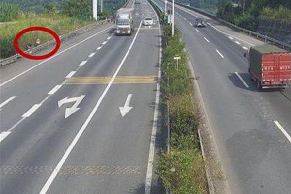 货车突然停车直接从上面下来了两个人网友:货车当客车使?