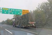 9区40个收费站95个车道!北京首批货车超限不停车检测设备启用