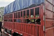 货车上一件货都没拉 却被交警当场拦住处罚 什么情况?
