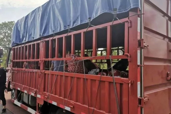货车上一件货都没拉却被交警当场拦住处罚什么情况?