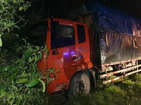 货车刹车失灵驾驶员将其开进树丛车上3人无一人受伤