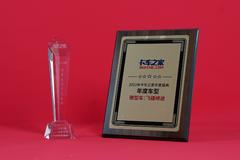 年度盛典:飞碟缔途获得2020年度车型奖