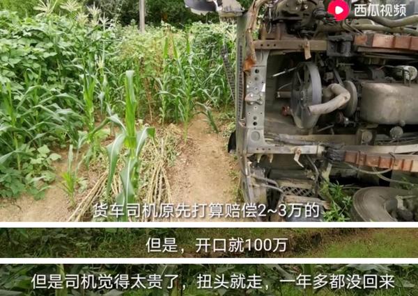 货车压倒村民的树被索要30万押金是树真贵还是讹人?
